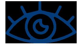 ojo visualiza