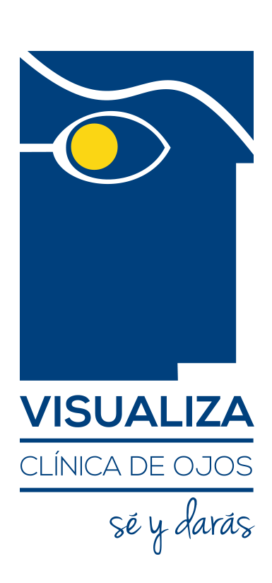Logo Visualiza
