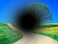 imagen baja visión