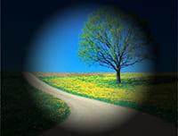imagen demostrativa de visión con glaucoma