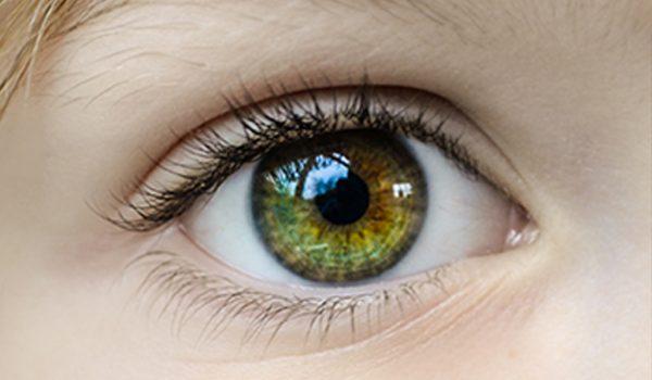 Retina Imagen