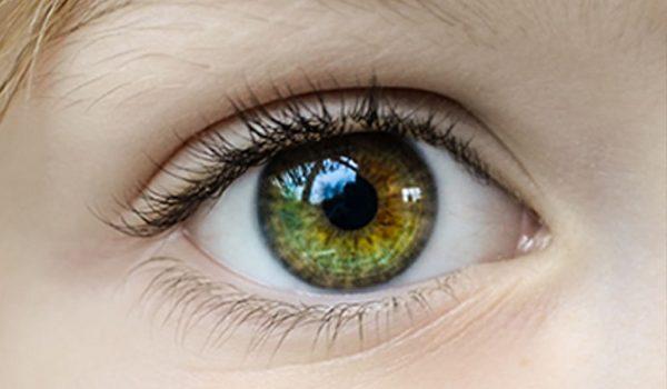 fotografía de un ojo sano